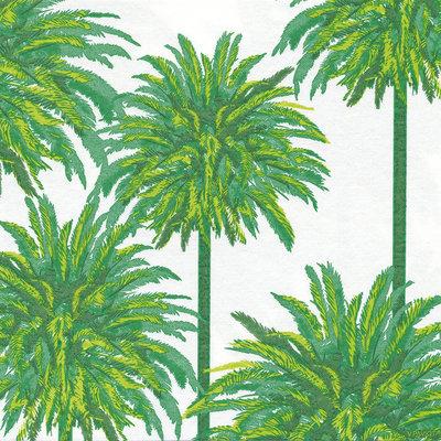 Francoise Paviot Servet Palm