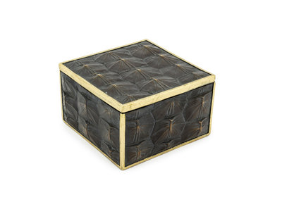 Decoratieve Box Turtle