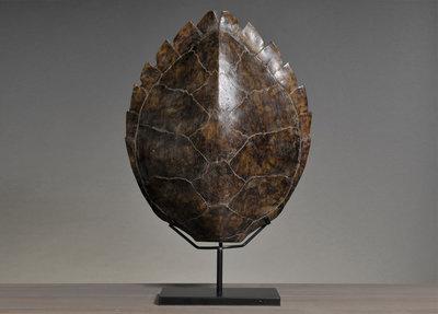 Afgietsel Schildpadschild Karet 51 cm