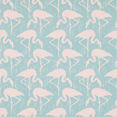 Flamingos .