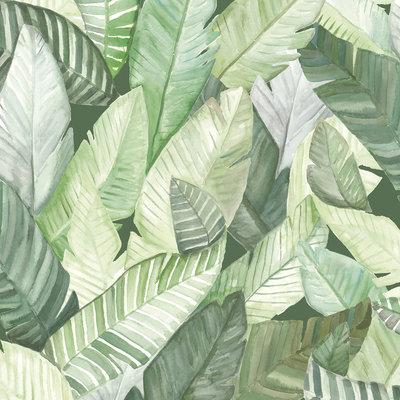 Tropisch Behang Banano Verde