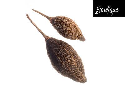 Baobab vrucht L